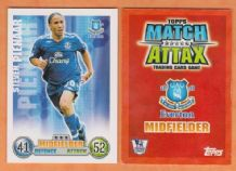 Everton Steven Pienaar South Africa